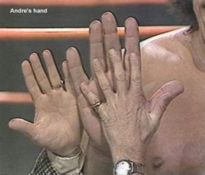 Andre grande main