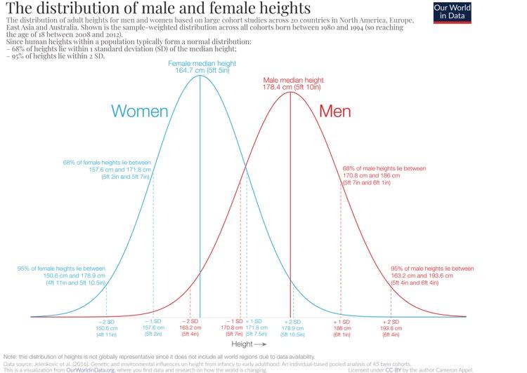 Répartition de la taille Hommes Femmes